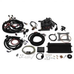 HOLLEY EFI TERMINATOR LS TBI KIT - HARD CORE GRAY W/ TRANSMISSION CONTROL, HLY 550-422