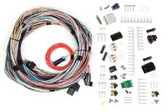 HOLLEY EFI UNTERMINATED UNIVERSAL MAIN HARNESS