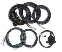 HOLLEY EFI DIGITAL DASH I/O ADAPTER WITH TERMINATED VEHICLE HARNESS, HLY 558-434