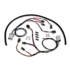 HOLLEY EFI HP SMART COIL IGNITION HARNESS, HLY 558-312