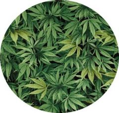 CANNABIS FABRIC FOR FOR HI5BER BOARD